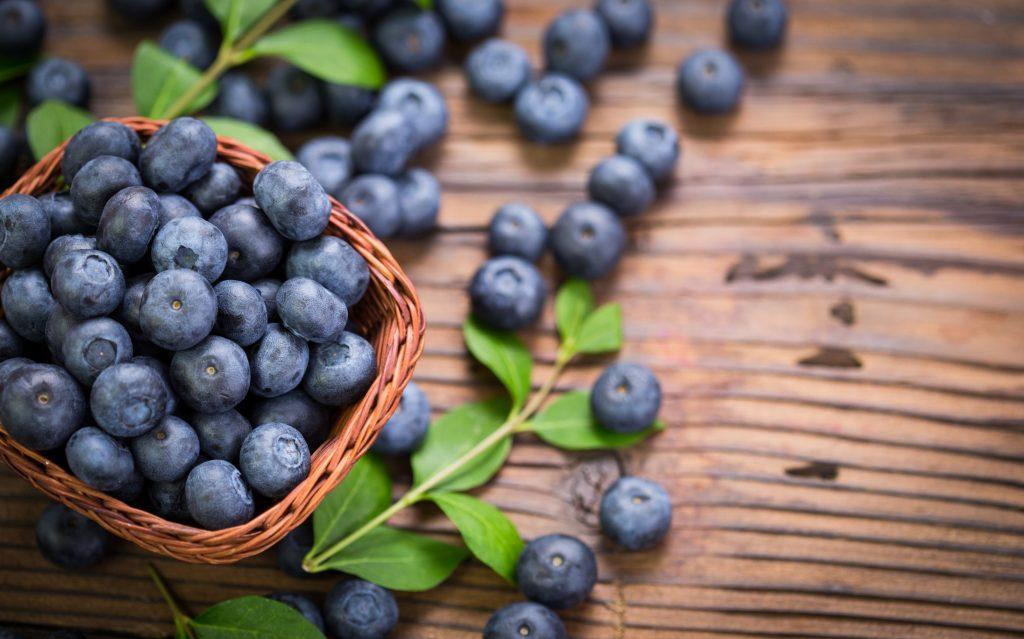 Coming Up: Alyeska Resort Blueberry Festival