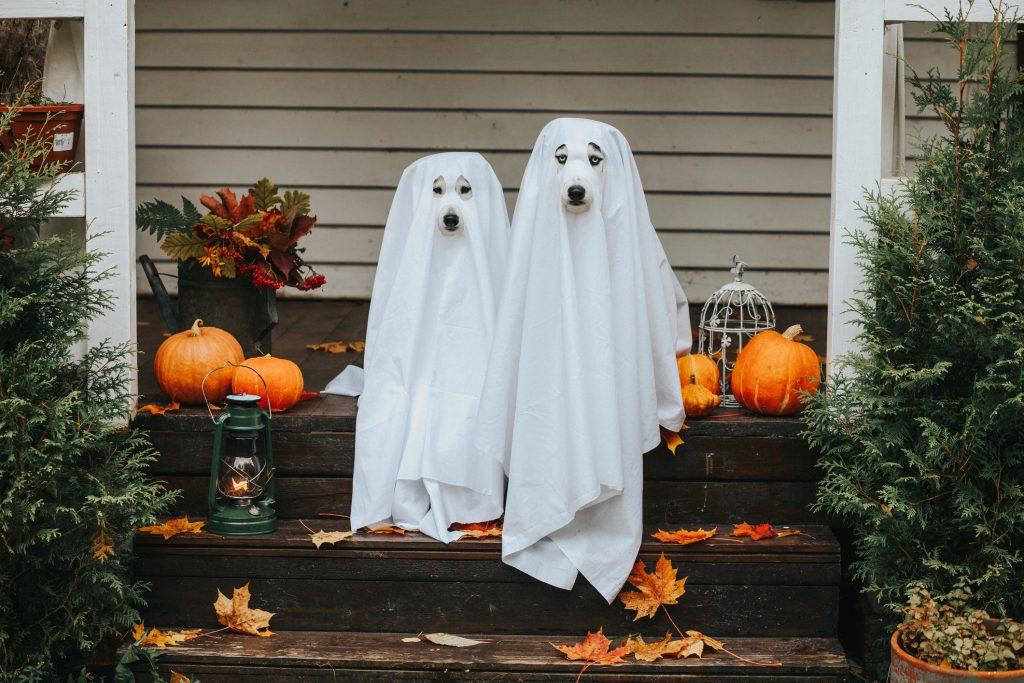 Spooky Events For Halloween